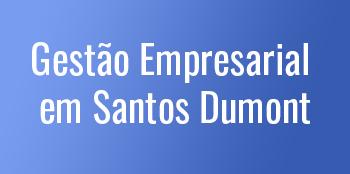 Gestão-Empresarial-em-Santos-Dumont